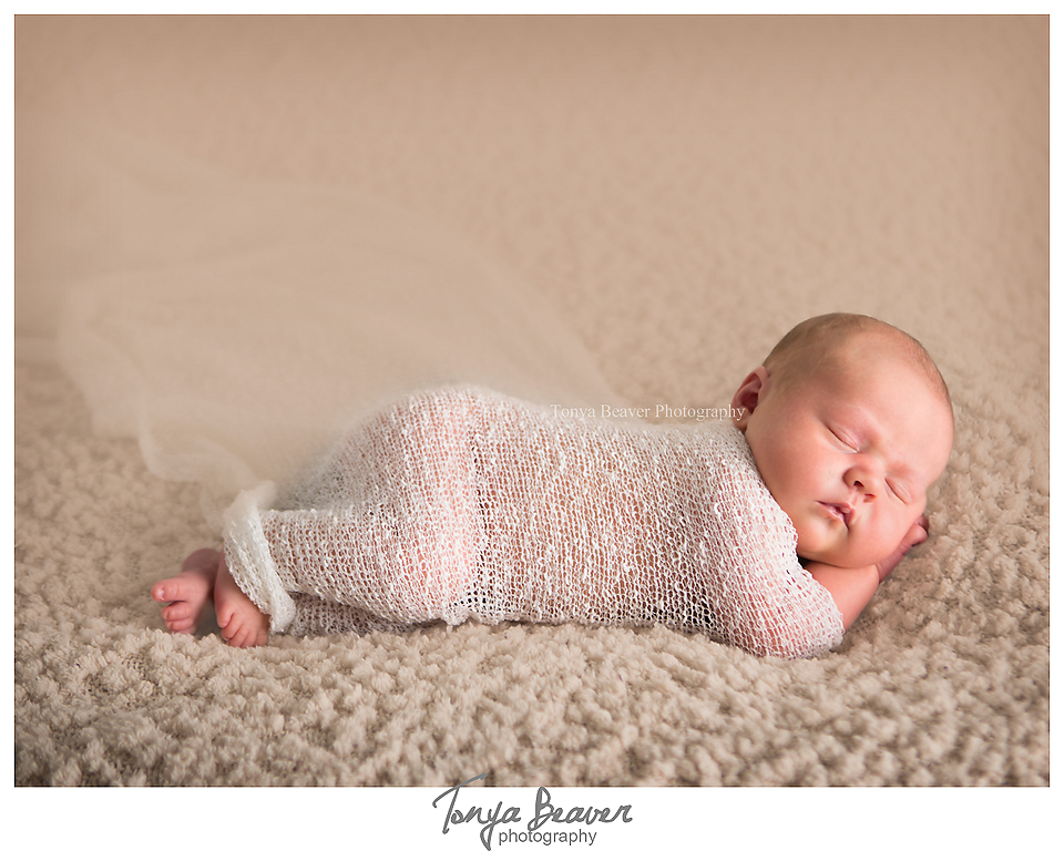 jacksonville newborn photographer; jacksonville photography studio; baby photos; newborn photos; maternity photos; tonya beaver photography 002 (Side 2) copy
