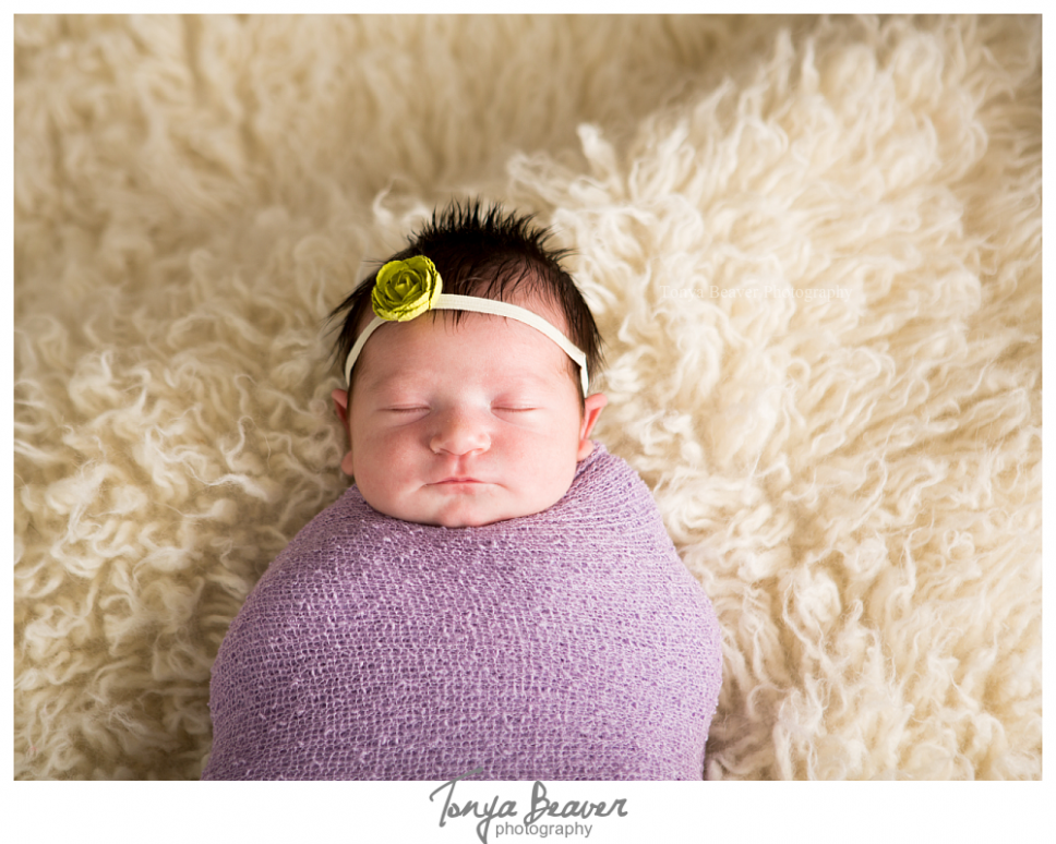 jacksonville newborn photographer; jacksonville photography studio; baby photos; newborn photos; maternity photos; tonya beaver photography 002 (Side 2)