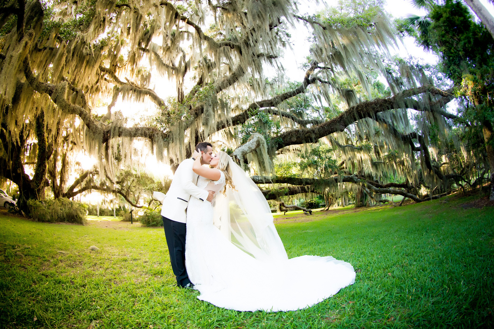 jacksonville wedding photographer, jacksonville engagement photographer, jacksonville family photographer, jacksonville newborn photographer, tonya beaver photography