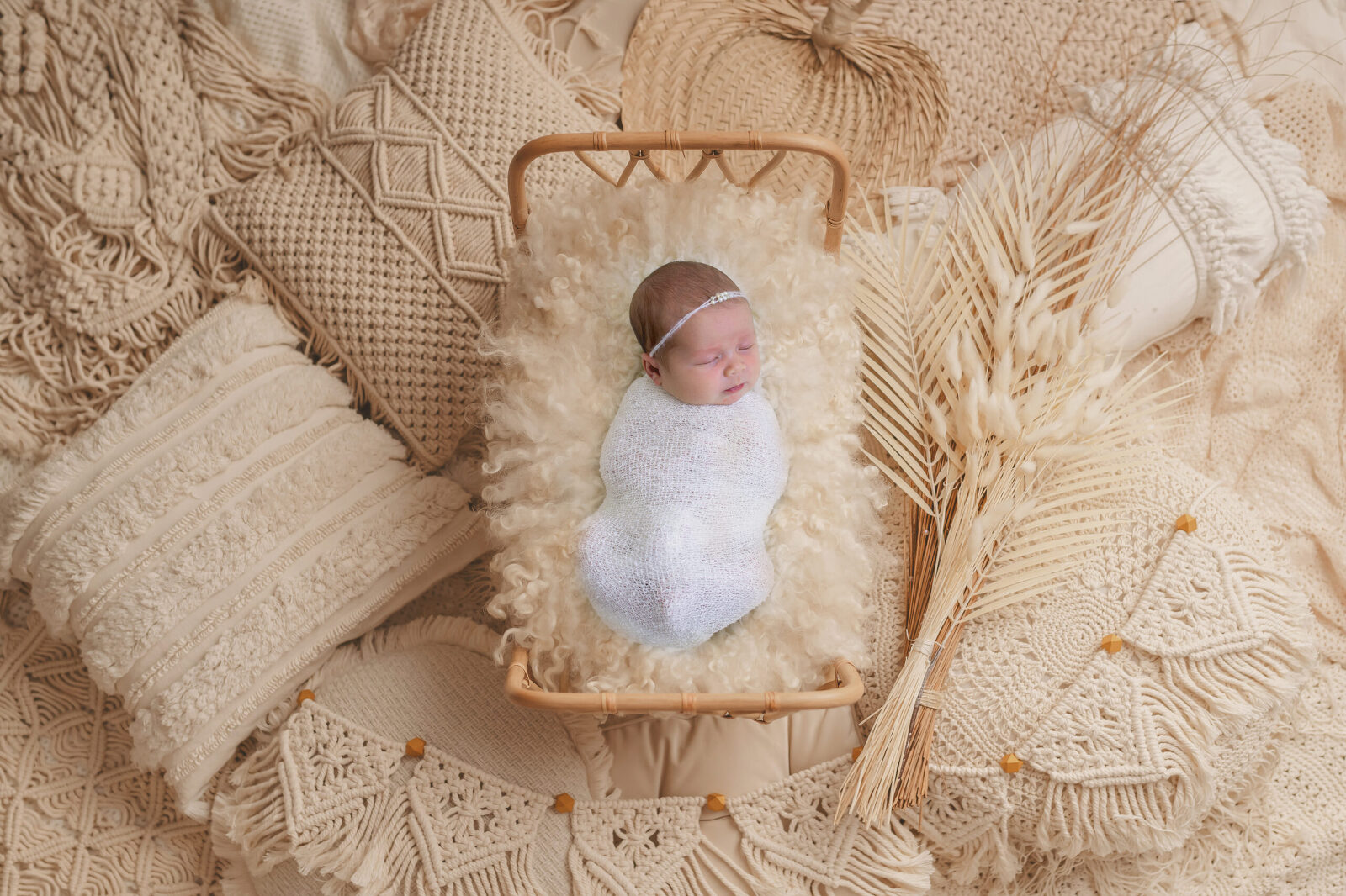 Jacksonville Newborn Photography by Tonya Beaver Photography